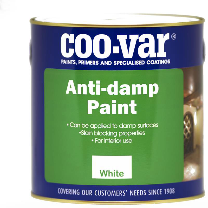 ANTI-DAMP PAINT 1L
